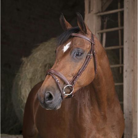 cabezada caballos filete
