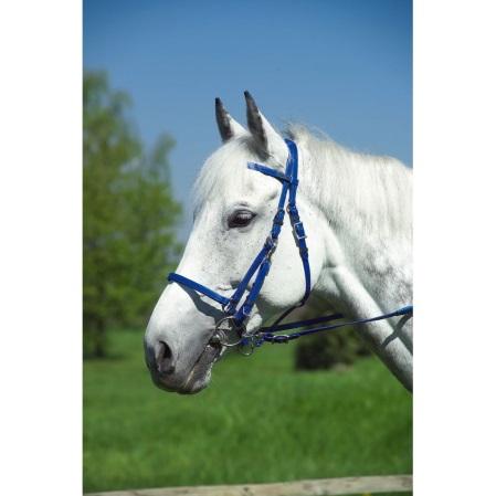 Cabezada caballos paseo sintética azul.