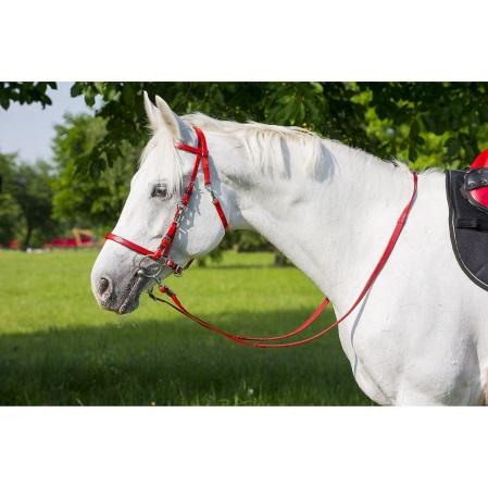Cabezada caballos paseo roja.