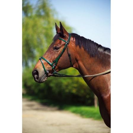 Cabezada caballos PVC verde.