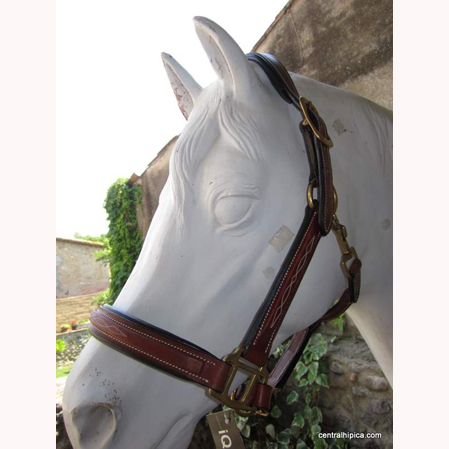 Cabezada cuadra cuero Iquus.