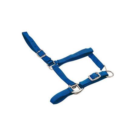 Cabezada cuadra potros nailon azul.