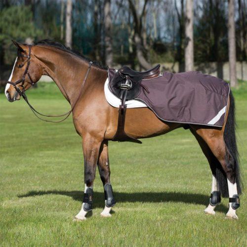 Mantas caballos riñoneras