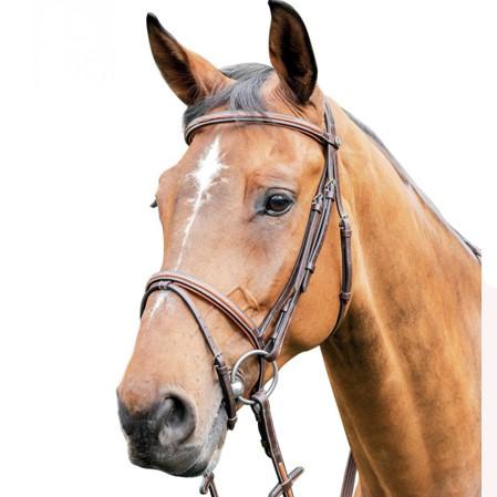 Cabezada caballos Prestige E87.