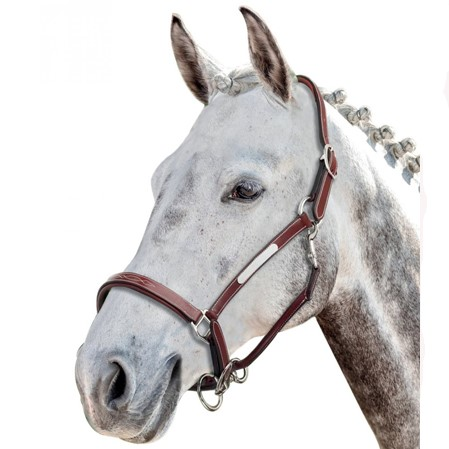 Cabezada cuadra caballos Prestige.